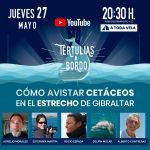 ▸ ¿COMO AVISTAR CETÁCEOS EN EL ESTRECHO DE GIBRALTAR? #39 Tertulias a Bordo